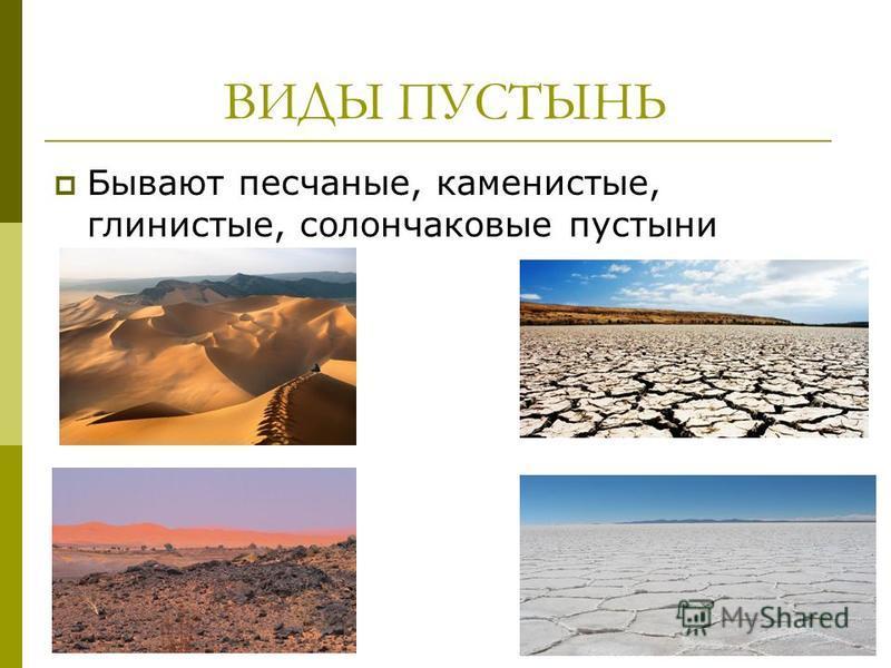 ВИДЫ ПУСТЫНЬ Бывают песчаные, каменистые, глинистые, солончаковые пустыни