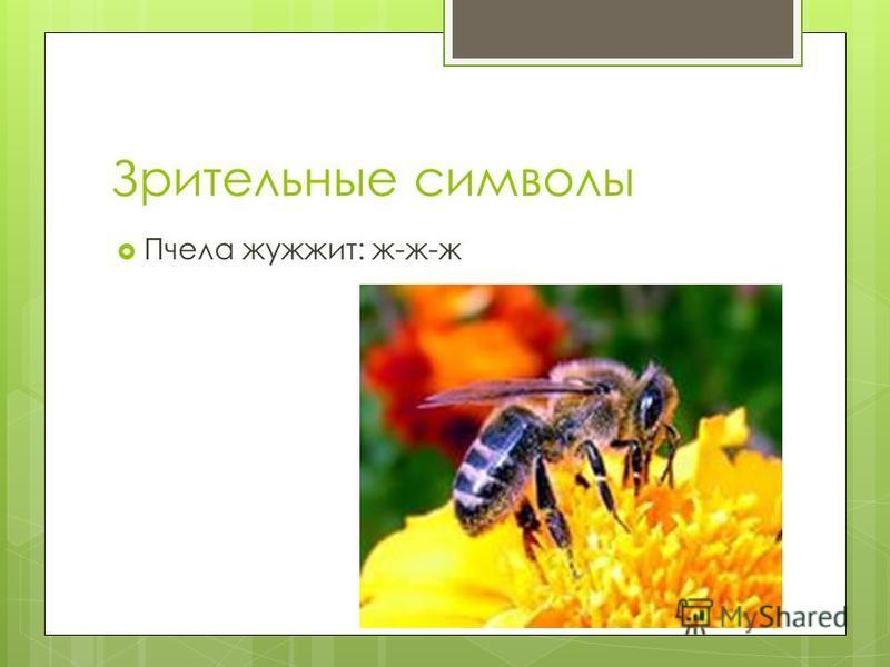 Зрительные символы Пчела жужжит: ж-ж-ж