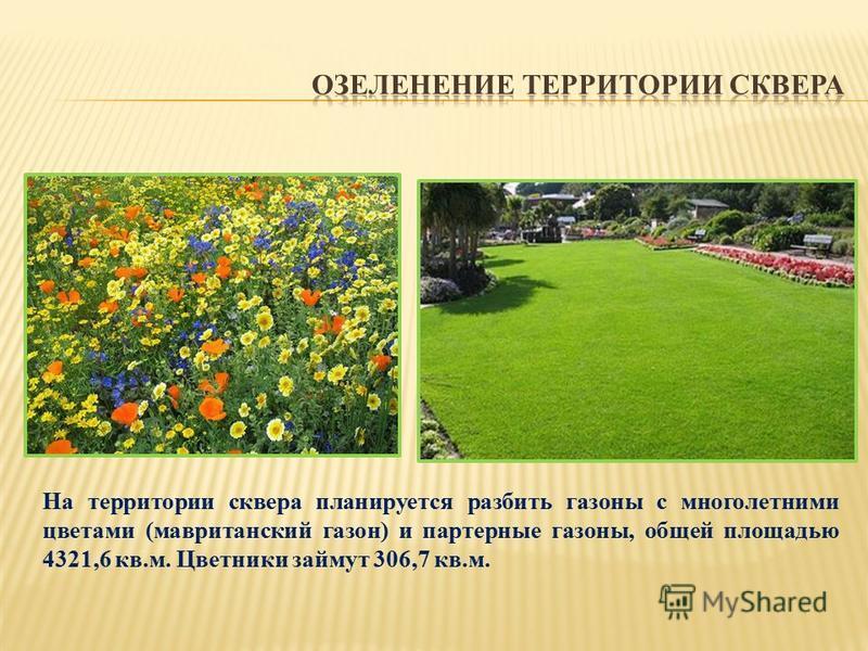На территории сквера планируется разбить газоны с многолетними цветами (мавританский газон) и партерные газоны, общей площадью 4321,6 кв.м. Цветники займут 306,7 кв.м.