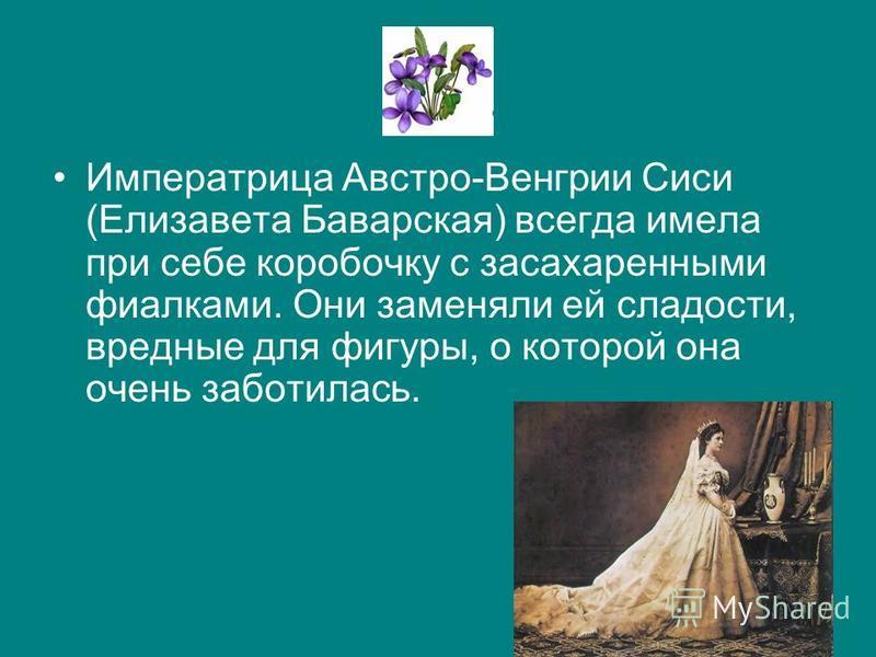 Императрица Австро-Венгрии Сиси (Елизавета Баварская) всегда имела при себе коробочку с засахаренными фиаелками. Они заменяли ей сладости, вредные для фигуры, о которой она очень заботилась.