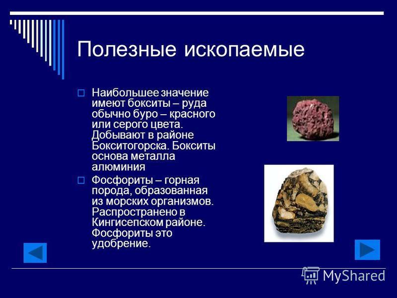 Полезные ископаемые Наибольшее значение имеют бокситы – руда обычно буро – красного или серого цвета. Добывают в районе Бокситогорска. Бокситы основа металла алюминия Фосфориты – горная порода, образованная из морских организмов. Распространено в Кин