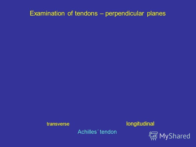 Examination of tendons – perpendicular planes transverse longitudinal Achilles´ tendon