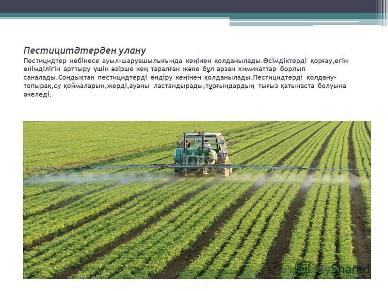 Пестицитдтерден улану Пестицидтер к ө бінесе ауыл-шаруашылы ғ ында ке ң інен қ олданылады. Ө сімдіктерді қ ор ғ ау,егін ө німділігін арттыру ү шін ә зірше ке ң тарал ғ ан ж ә не б ұ л арзан химикаттар борлып саналады.Сонды қ тан пестицидтерді ө ндіру