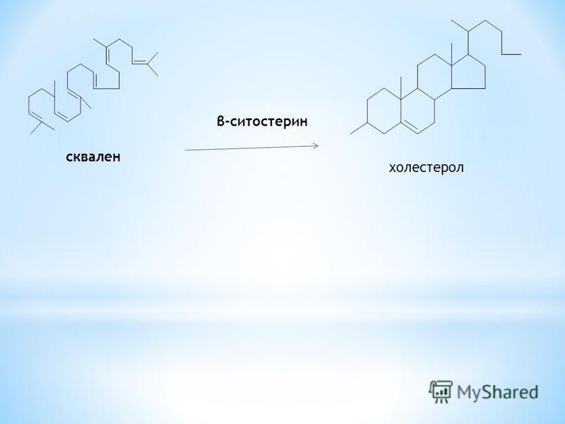 сквален холестерол β-ситостерин