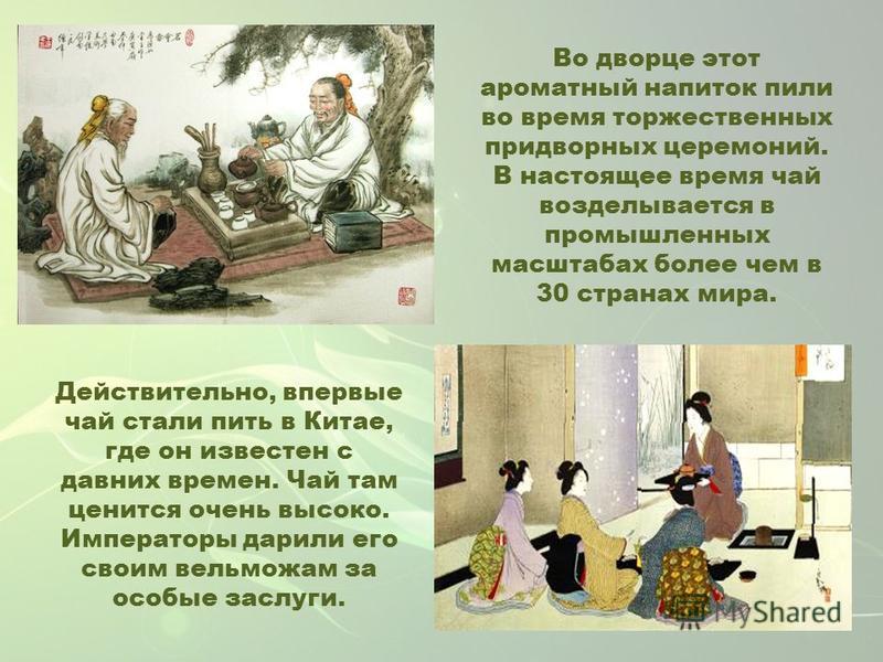 Действительно, впервые чай стали пить в Китае, где он известен с давних времен. Чай там ценится очень высоко. Императоры дарили его своим вельможам за особые заслуги. Во дворце этот ароматный напиток пили во время торжественных придворных церемоний.