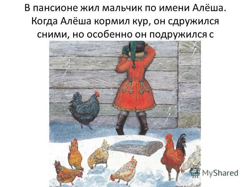 В пансионе жил мальчик по имени Алёша. Когда Алёша кормил кур, он сдружился сними, но особенно он подружился с Чернушкой.