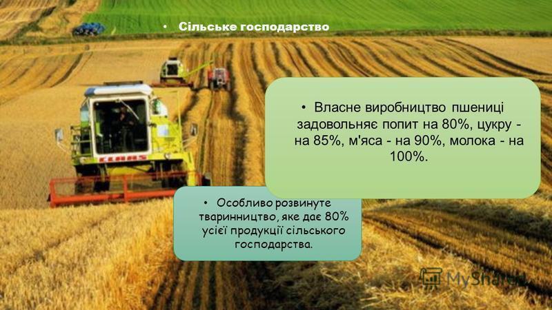 Особливо розвинуте тваринництво, яке дає 80% усієї продукції сільського господарства. Власне виробництво пшениці задовольняє попит на 80%, цукру - на 85%, м'яса - на 90%, молока - на 100%. Сільське господарство