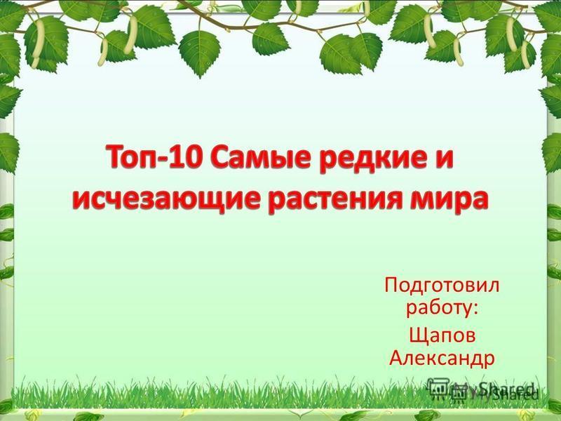 Подготовил работу: Щапов Александр