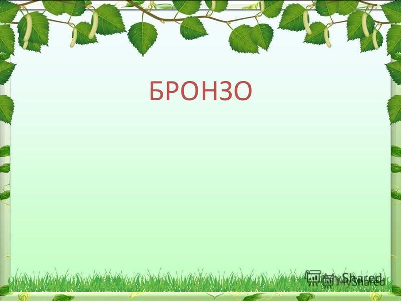 БРОНЗО