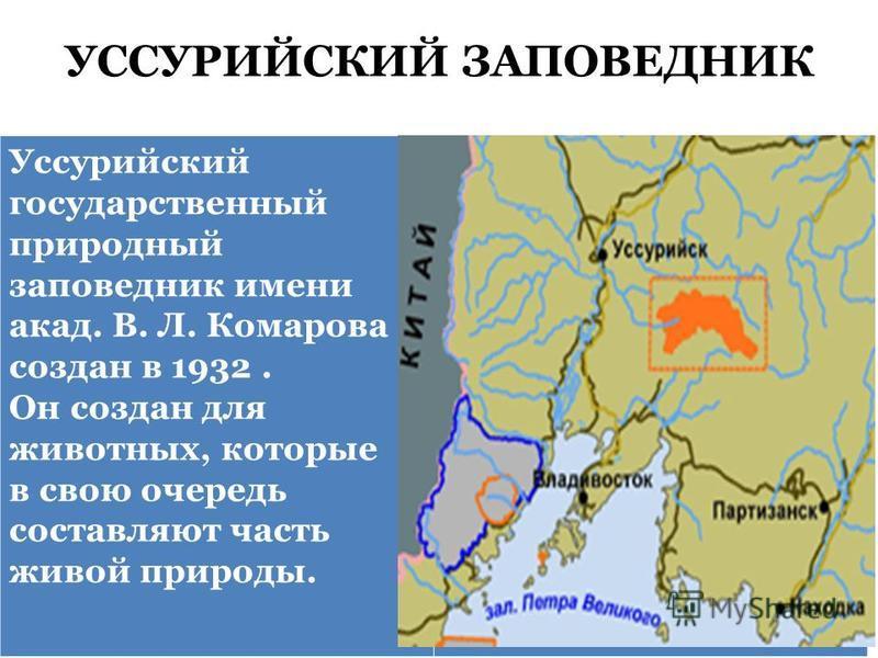 УССУРИЙСКИЙ ЗАПОВЕДНИК Уссурийский государственный природный заповедник имени акад. В. Л. Комарова создан в 1932. Он создан для животных, которые в свою очередь составляют часть живой природы.