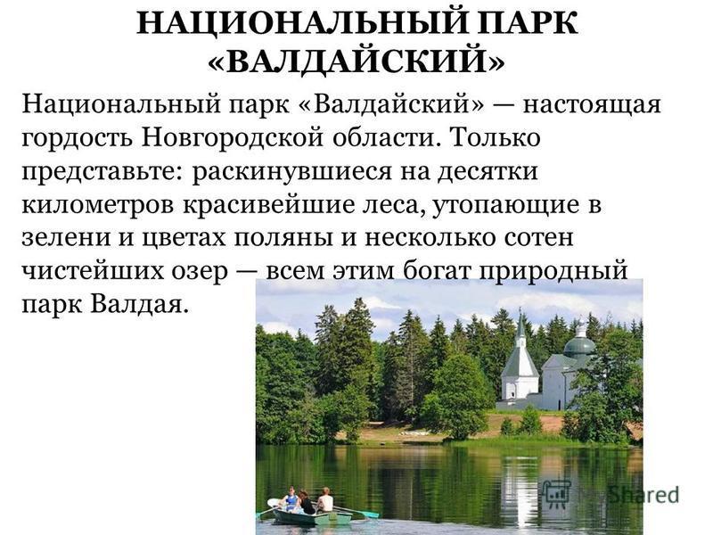 НАЦИОНАЛЬНЫЙ ПАРК «ВАЛДАЙСКИЙ» Национальный парк «Валдайский» настоящая гордость Новгородской области. Только представьте: раскинувшиеся на десятки километров красивейшие леса, утопающие в зелени и цветах поляны и несколько сотен чистейших озер всем
