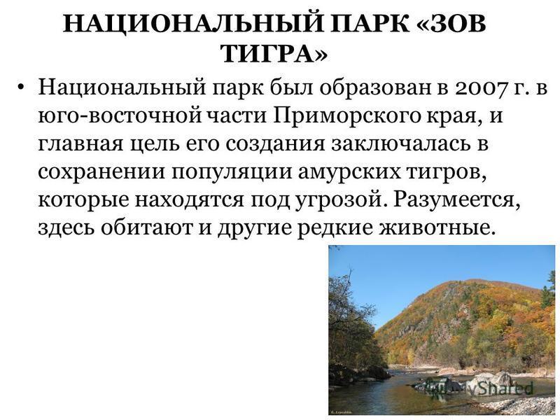 НАЦИОНАЛЬНЫЙ ПАРК «ЗОВ ТИГРА» Национальный парк был образован в 2007 г. в юго-восточной части Приморского края, и главная цель его создания заключалась в сохранении популяции амурских тигров, которые находятся под угрозой. Разумеется, здесь обитают и