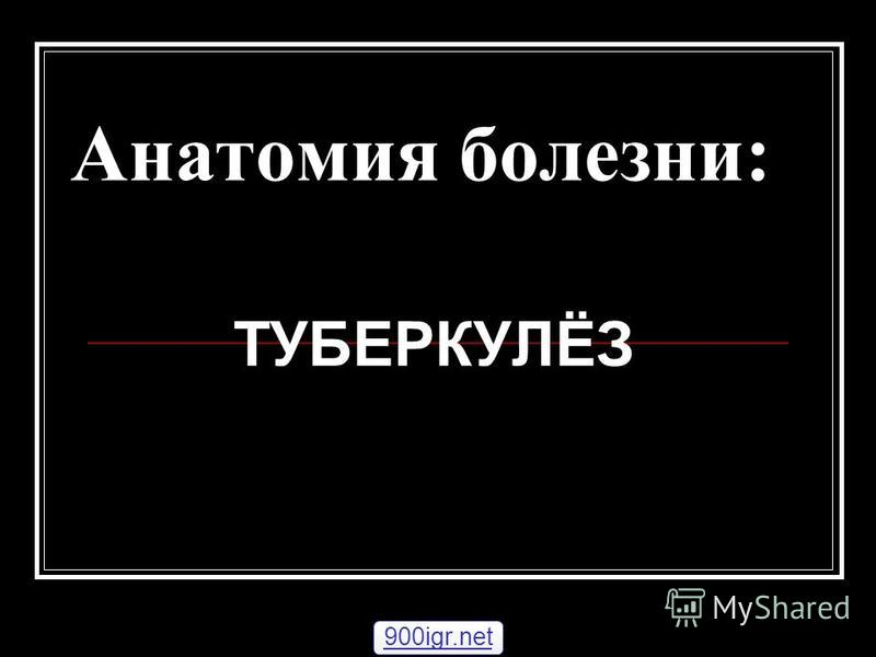 Анатомия болезни: ТУБЕРКУЛЁЗ 900igr.net