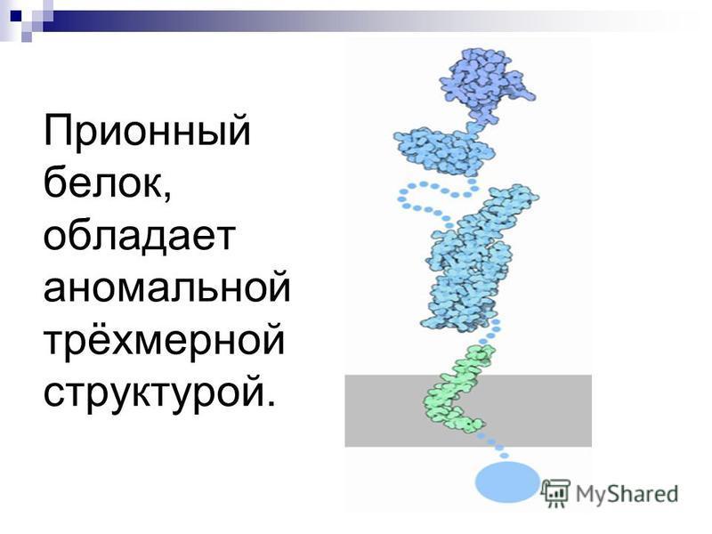 Прионный белок, обладает аномальной трёхмерной структурой.