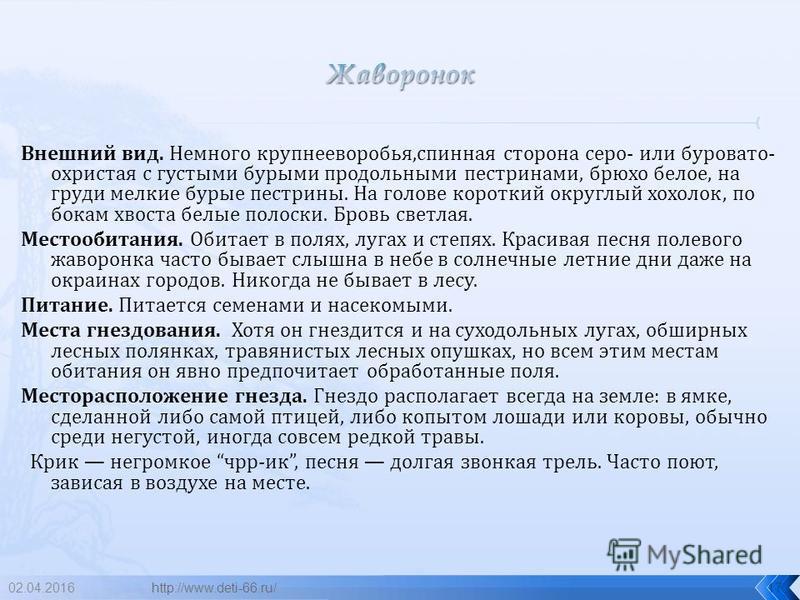 02.04.201616 жаворонок http://www.deti-66.ru/