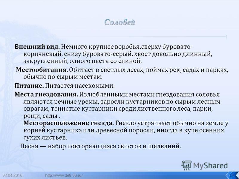 02.04.201618 соловей http://www.deti-66.ru/