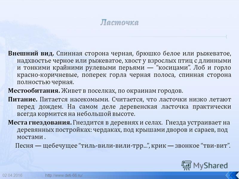 02.04.201622 ласточка http://www.deti-66.ru/