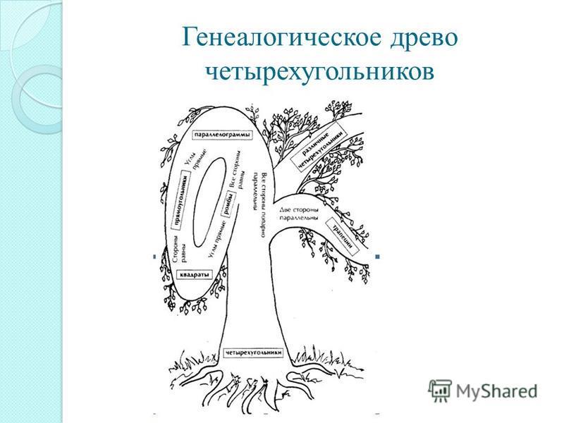 Генеалогическое древо четырехугольников