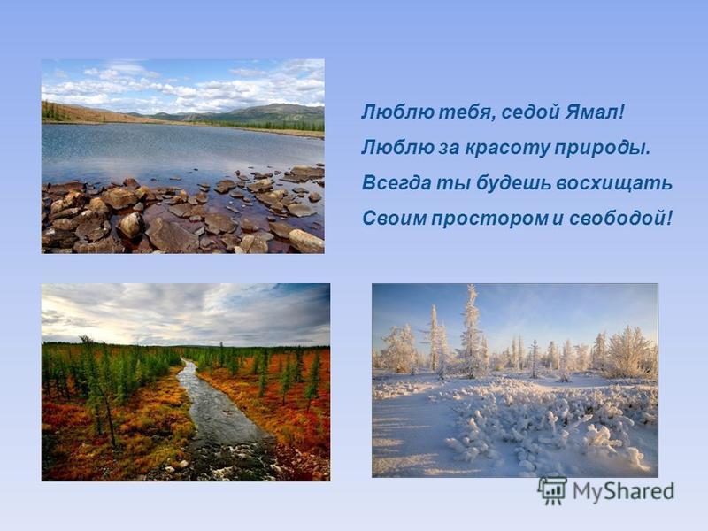 Люблю тебя, седой Ямал ! Люблю за красоту природы. Всегда ты будешь восхищать Своим простором и свободой !
