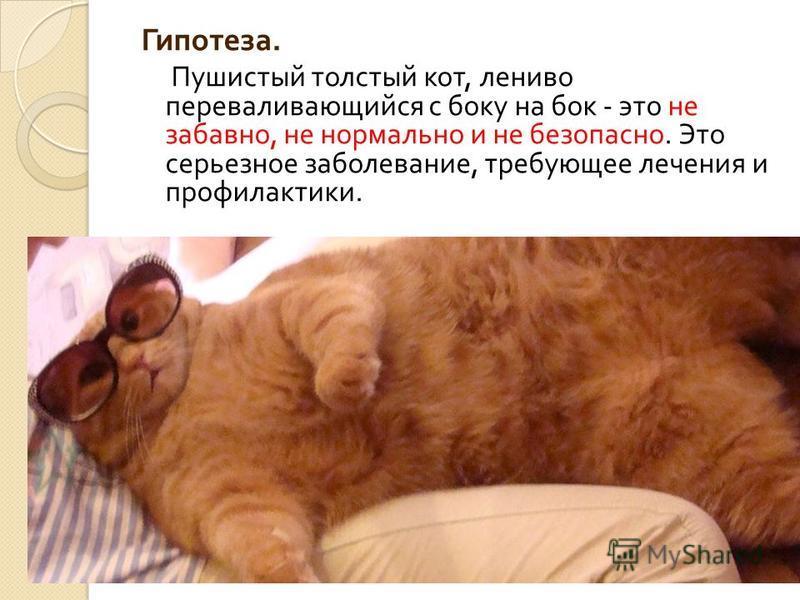 Гипотеза. Пушистый толстый кот, лениво переваливающийся с боку на бок - это не забавно, не нормально и не безопасно. Это серьезное заболевание, требующее лечения и профилактики.