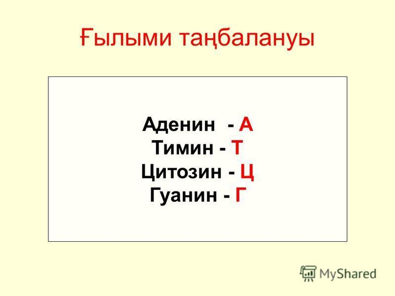Ғылыми таңбалануы Аденин - А Тимин - Т Цитозин - Ц Гуанин - Г
