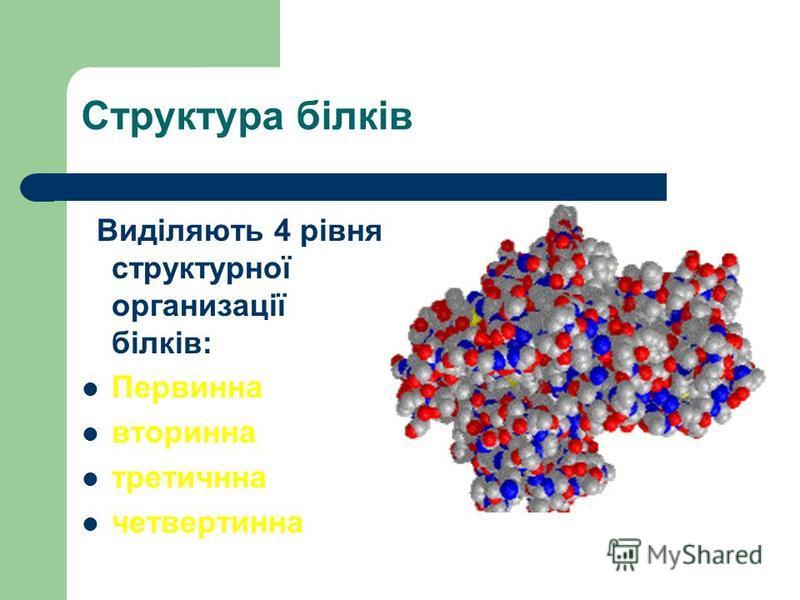 Структура білків Виділяють 4 рівня структурної организації білків: Первинна вторинна третичнна четвертинна