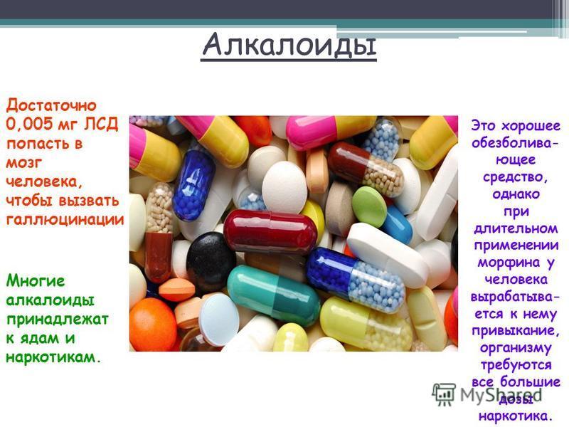 Алкалоиды Достаточно 0,005 мг ЛСД попасть в мозг человека, чтобы вызвать галлюцинации Многие алкалоиды принадлежат к ядам и наркотикам. Это хорошее обезболивающее средство, однако при длительном применении морфина у человека вырабатывается к нему при
