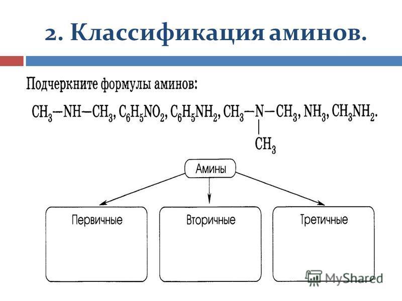 2. Классификация аминов.