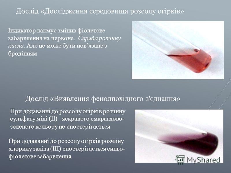 Дослід « Дослідження середовища розсолу огірків » Індикатор лакмус змінив фіолетове забарвлення на червоне. Середа розчину кисла. Але це може бути пов язане з бродінням При додаванні до розсолу огірків розчину сульфату міді (II) яскравого смарагдово