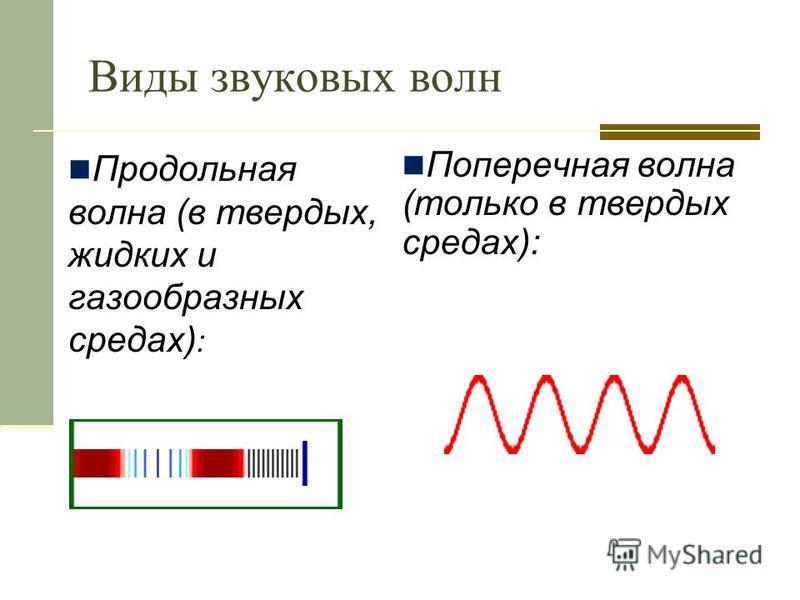 Виды звуковых волн Продольная волна (в твердых, жидких и газообразных средах) : Поперечная волна (только в твердых средах):