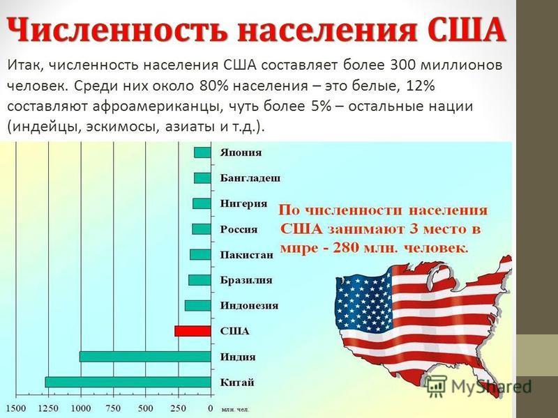 Итак, численность населения США составляет более 300 миллионов человек. Среди них около 80% населения – это белые, 12% составляют афроамериканцы, чуть более 5% – остальные нации (индейцы, эскимосы, азиаты и т.д.).