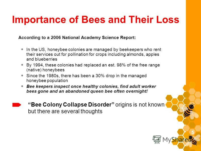 Importance of Bees and Their Loss According to a 2006 National Academy Science Report: In the US, honeybee colonies are managed by beekeepers who rent their services out for pollination for crops including almonds, apples and blueberries By 1994, the