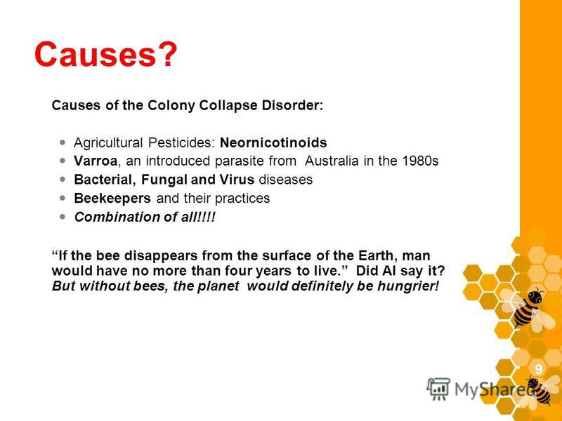 Causes? Causes of the Colony Collapse Disorder: Agricultural Pesticides: Neornicotinoids Varroa, an introduced parasite from Australia in the 1980s Bacterial, Fungal and Virus diseases Beekeepers and their practices Combination of all!!!! If the bee