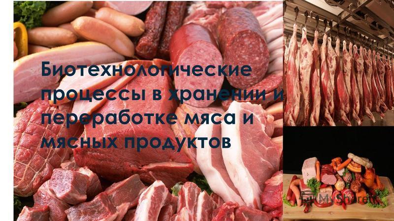 Биотехнологические процессы в хранении и переработке мяса и мясных продуктов