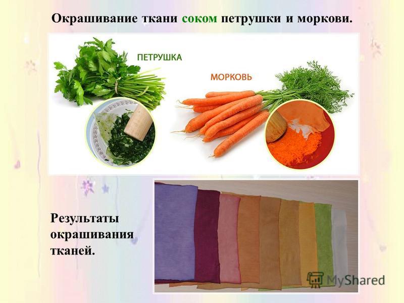 Окрашивание ткани соком петрушки и моркови. Результаты окрашивания тканей.