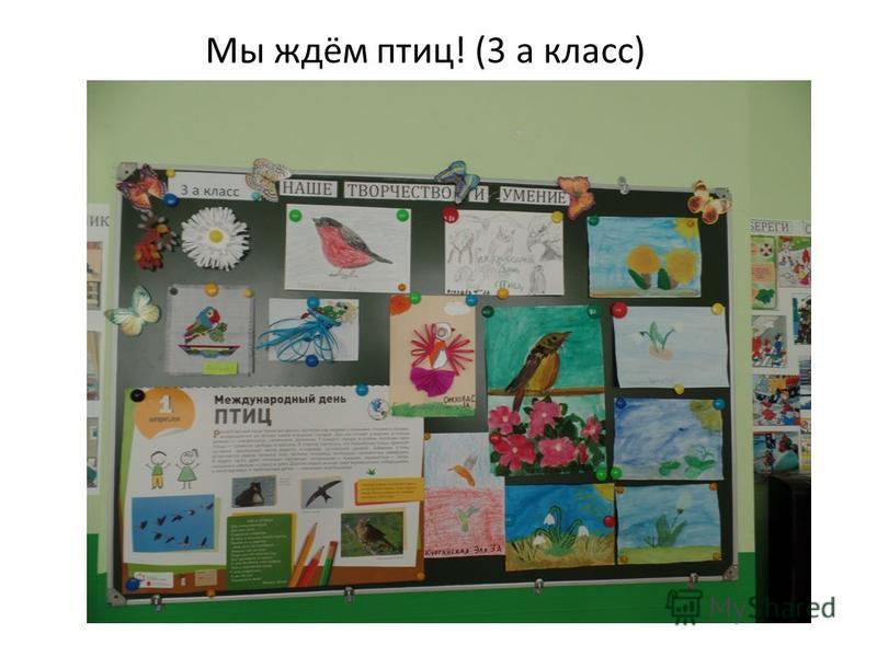 Мы ждём птиц! (3 а класс)