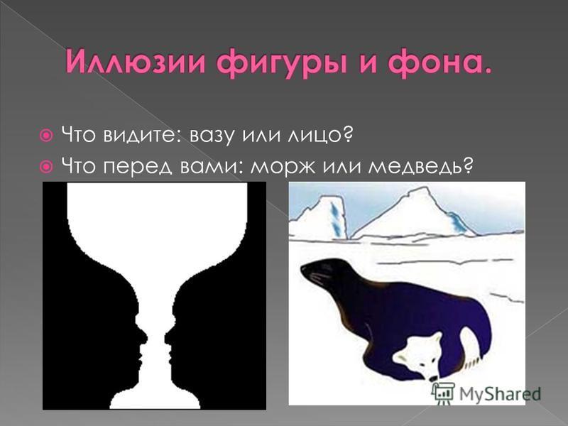 Что видите: вазу или лицо? Что перед вами: морж или медведь?