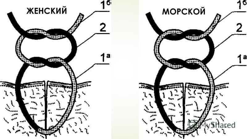 ЖЕНСКИЙ МОРСКОЙ