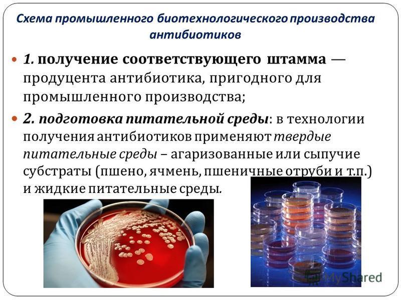 Схема промышленного биотехнологического производства антибиотиков 1. получение соответствующего штамма продуцента антибиотика, пригодного для промышленного производства ; 2. подготовка питательной среды : в технологии получения антибиотиков применяют