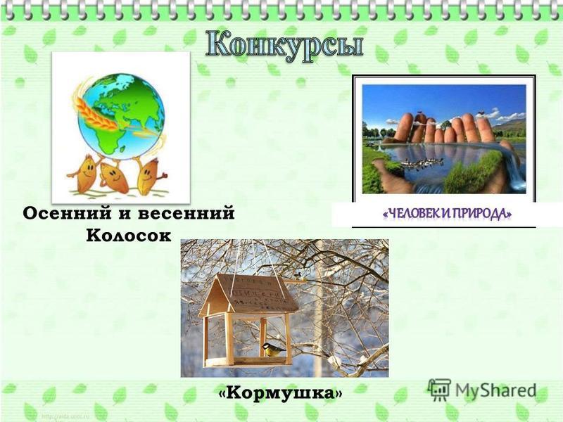 Осенний и весенний Колосок «Кормушка»