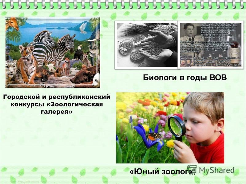 Городской и республиканский конкурсы «Зоологическая галерея» Биологи в годы ВОВ «Юный зоолог»