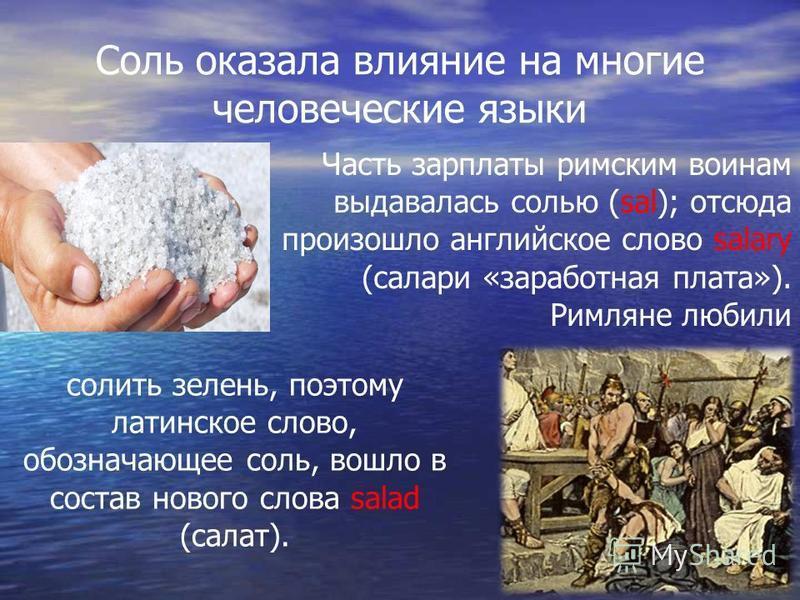 Соль оказала влияние на многие человеческие языки Часть зарплаты римским воинам выдавалась солью (sal); отсюда произошло английское слово salary (сальери «заработная плата»). Римляне любили солить зелень, поэтому латинское слово, обозначающее соль, в