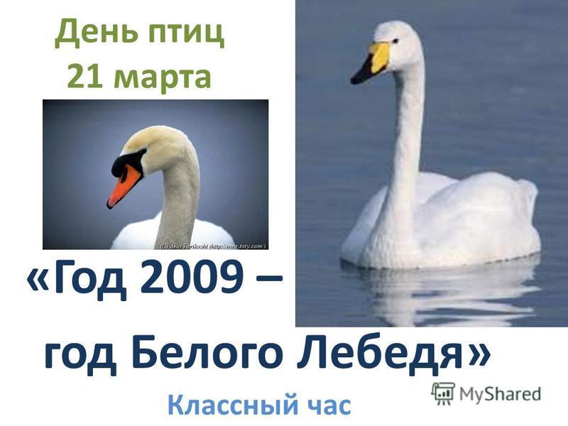 День птиц 21 марта «Год 2009 – год Белого Лебедя» Классный час