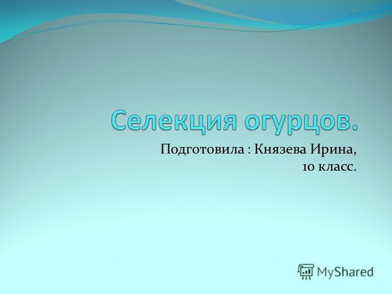 Подготовила : Князева Ирина, 10 класс.