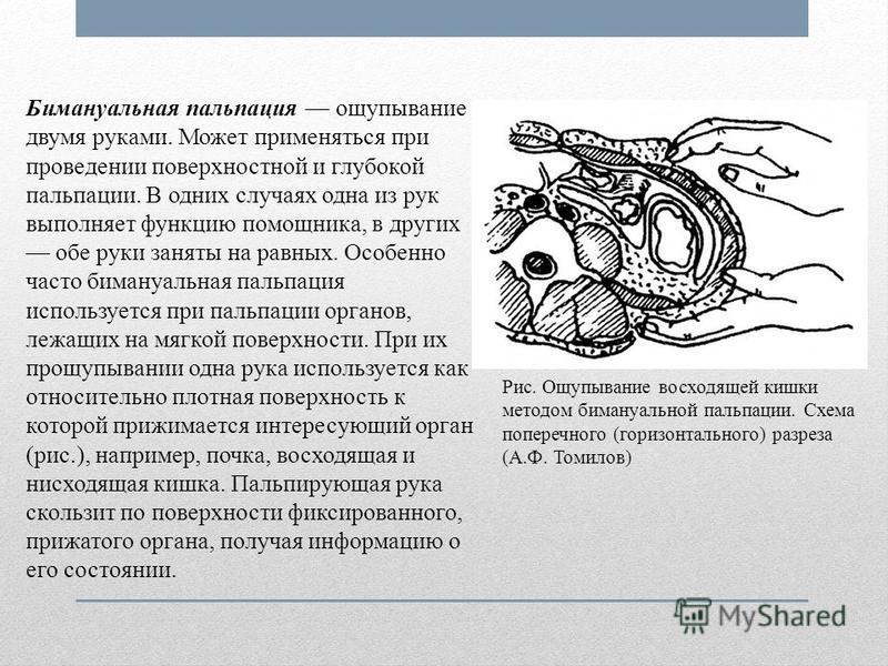 Бимануальная пальпация ощупывание двумя руками. Может применяться при проведении поверхностной и глубокой пальпации. В одних случаях одна из рук выполняет функцию помощника, в других обе руки заняты на равных. Особенно часто бимануальная пальпация ис