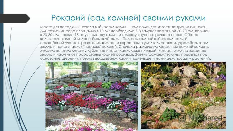 Рокарий (сад камней) своими руками Место для посадки. Сначала выбираем камни - нам подойдет известняк, гранит или туф. Для создания сада площадью в 10 м 2 необходимо 7-8 валунов величиной 60-70 см, камней в 20-30 см – около 15 штук, тележку гальки и