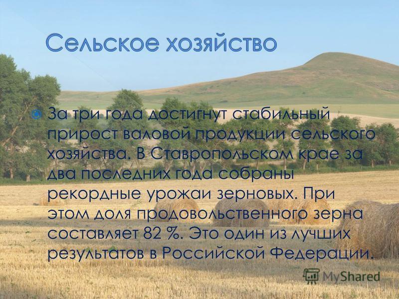 За три года достигнут стабильный прирост валовой продукции сельского хозяйства. В Ставропольском крае за два последних года собраны рекордные урожаи зерновых. При этом доля продовольственного зерна составляет 82 %. Это один из лучших результатов в Ро