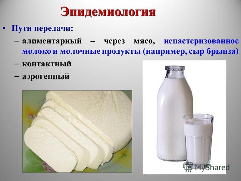 Эпидемиология Пути передачи: – алиментарный – через мясо, непастеризованное молоко и молочные продукты (например, сыр брынза) – контактный – аэрогенный