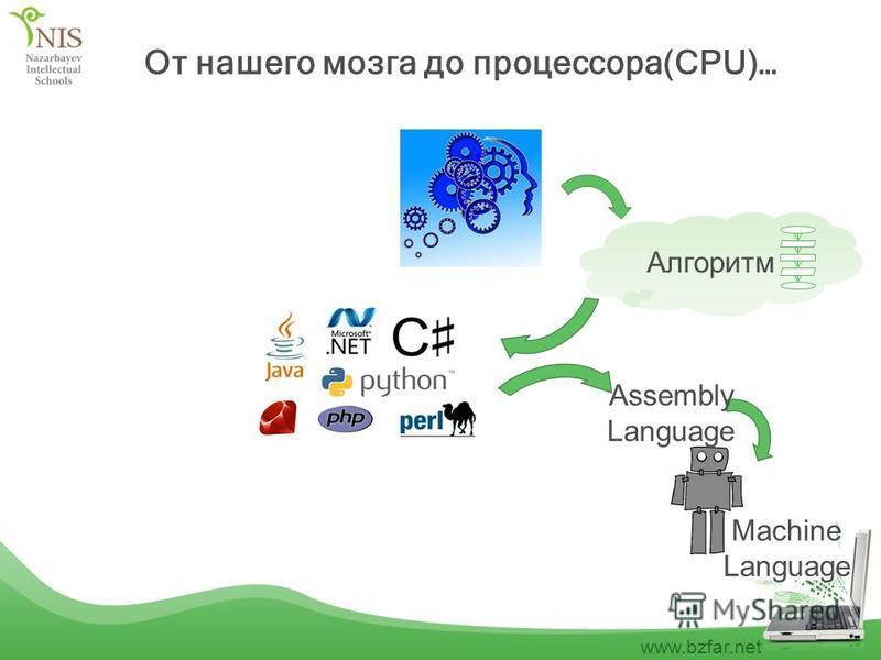www.bzfar.net От нашего мозга до процессора(CPU)… Machine Language Assembly Language Алгоритм