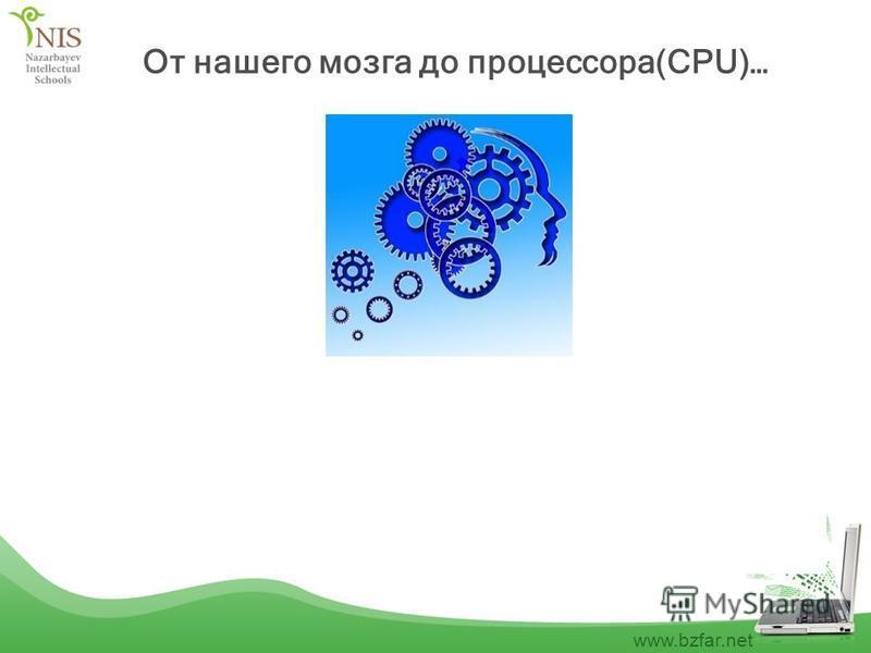www.bzfar.net От нашего мозга до процессора(CPU)…